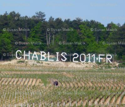 Chablis Wine Landscape, France