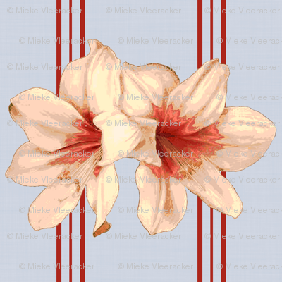 Lily (Blue background - Striped)
