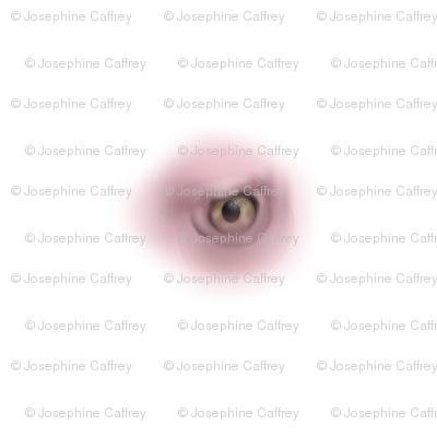 Vulture Eye