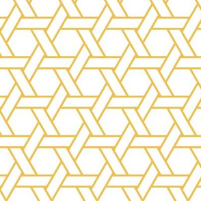 kagome outline in mimosa