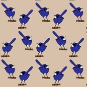 Rrrrrrrrrrrrfairy-wrens_shop_thumb