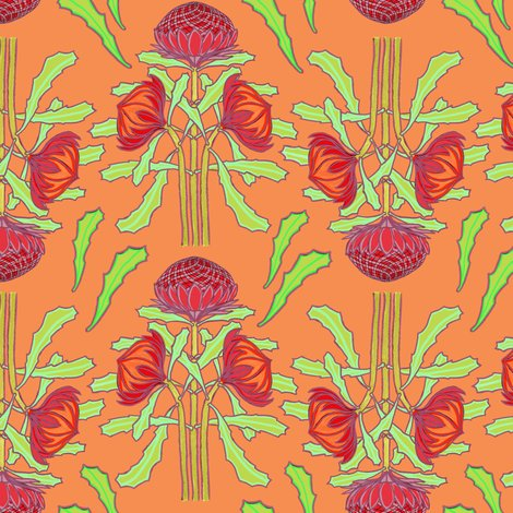 Rrspring-waratahs_on-apricot-2013_shop_preview