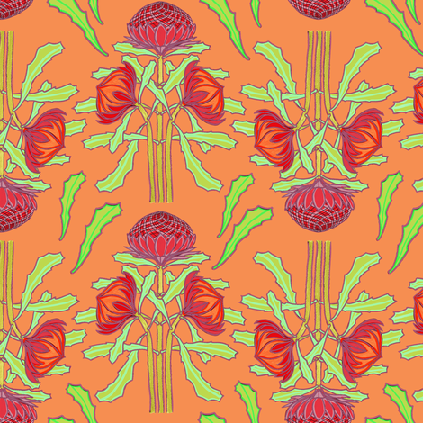 Spring waratahs on apricot by Su_G fabric by su_g on Spoonflower - custom fabric