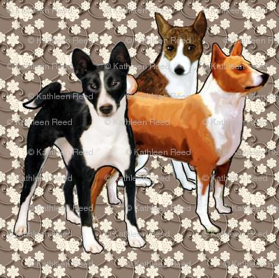 three basenji dogs