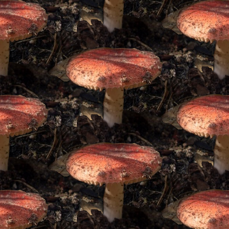 Mushroom in the Dirt fabric by pond_ripple on Spoonflower - custom fabric