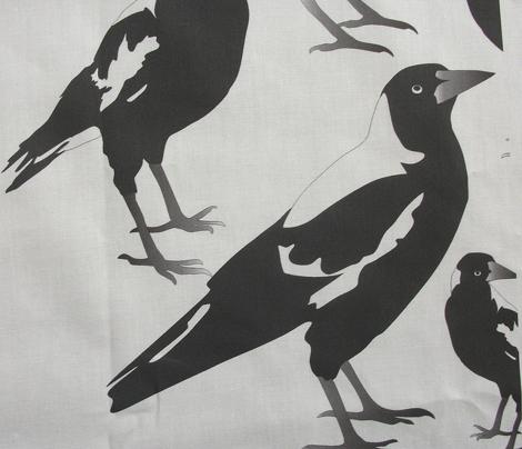 Magpie Black n White