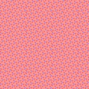 Blue-peach2