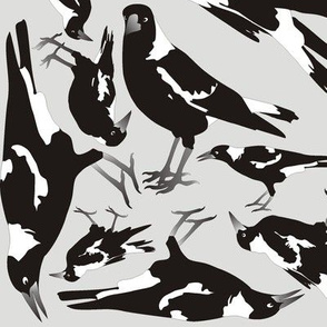 Monochrome Magpies