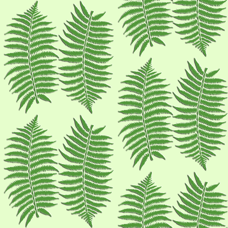 fern fabric by krs_expressions on Spoonflower - custom fabric