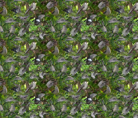 Mockingbird on bougainvillea fabric by eclectic_house on Spoonflower - custom fabric