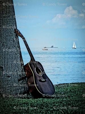 Guitar #1
