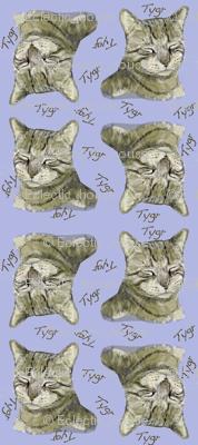 Tygr Tabby Cat