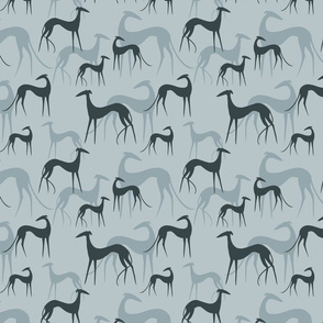 sighthounds blue