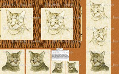 Tygr Tabby Cat pillow larger version