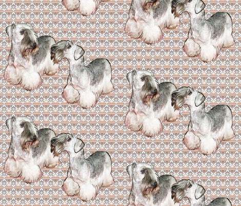 Cesky Terrier Fabric fabric by dogdaze_ on Spoonflower - custom fabric