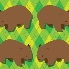 Wombat Argyle