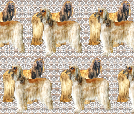 Afghan Hounds Fabric fabric by dogdaze_ on Spoonflower - custom fabric