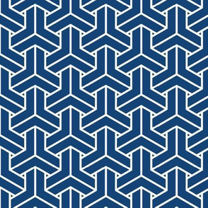 bishamon solid in kyanite