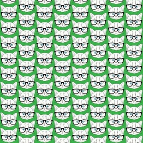 Kitten Hipster Green Small