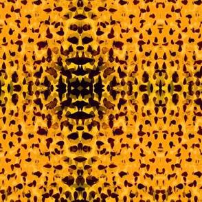 Petals in Yellow