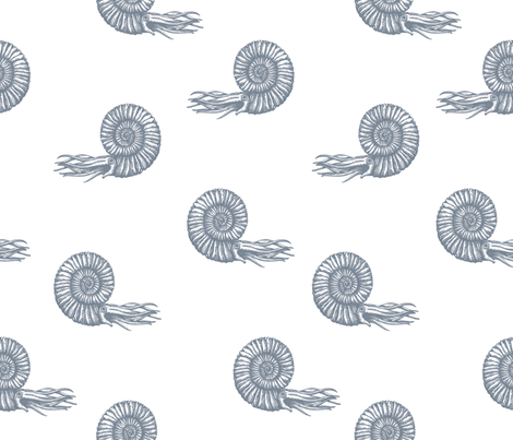 ammonite white and gray 50 fabric by chicca_besso on Spoonflower - custom fabric