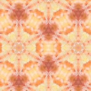 Macro Juice Pulp Kaleidoscope