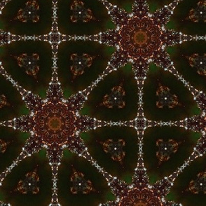 Macro Glittery Ornament Kaleidoscope