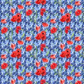 Rrpoppies_and_forget_me_not_shop_thumb