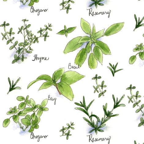 Culinary Herbs fabric by countrygarden on Spoonflower - custom fabric