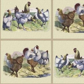 Chicken Tiles