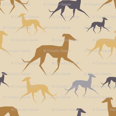 Italian Greyhound beige