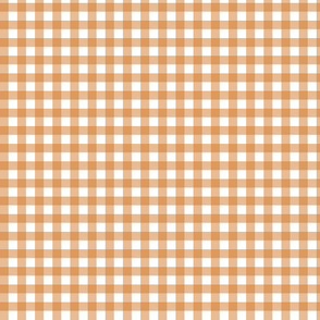 Burnt Orange Gingham