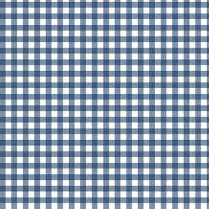 Navy Blue Gingham