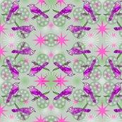 Rbluejay_three_fancier_saturated_pink_green_shop_thumb