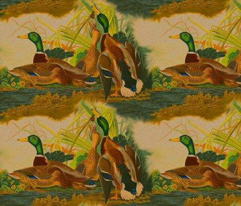 Rrobert_havell_1834_mallard_duck_seamless_brighter_textured_shop_preview