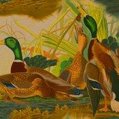 Rrobert_havell_1834_mallard_duck_seamless_brighter_textured_shop_thumb