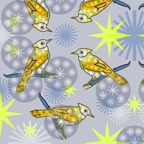 Yellow Bluejay - Gray