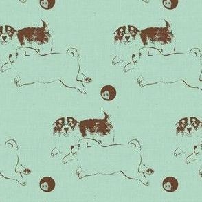 Puppy Love -  blue/brown