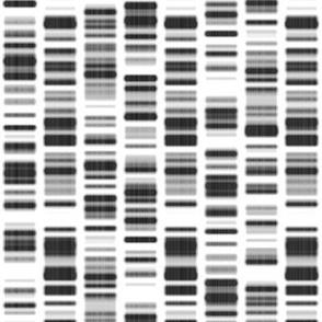 DNA Print