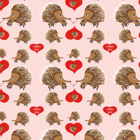 Echidna Love in Pink Valentines Day   fabric by amy_g on Spoonflower - custom fabric