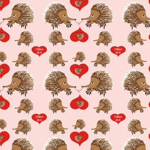 Echidna Love in Pink Valentines Day