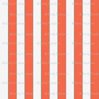 Orange then White Striped