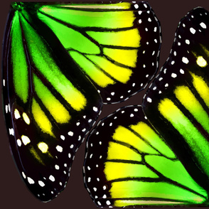 Green-Yellow Gradient Monarch Butterfly Wings
