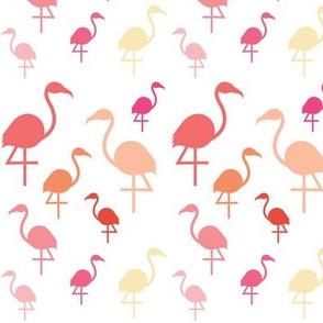 Flamingos in pink / coral / lemon on white