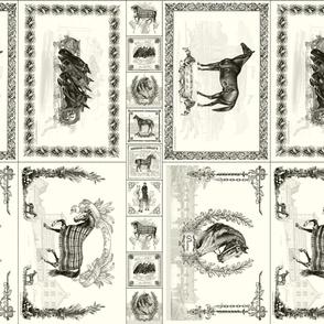Placemats + coasters: Ecru
