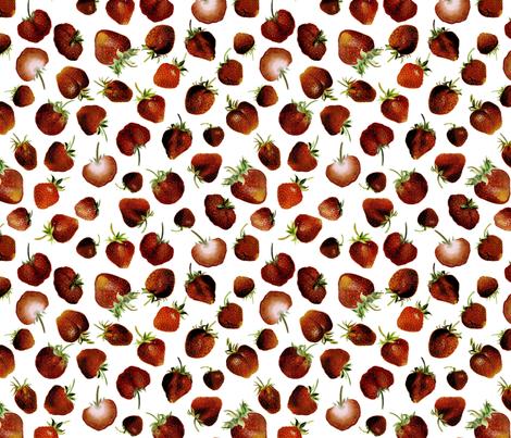 Strawberry 1899 No. I fabric by maxje on Spoonflower - custom fabric