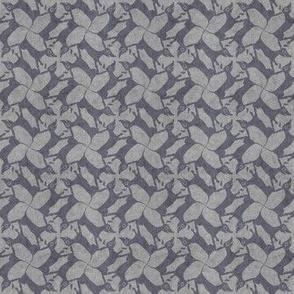 gray doxies