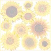 Rrrrrsunflowers1_shop_thumb