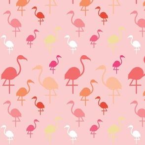 Flamingos on Pale pink