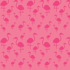 Flamingos in Hot Pink on Pink